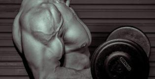 Ważne Odżywki białkowe